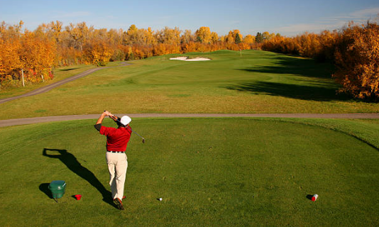 Why You Need Golf Training and Playing