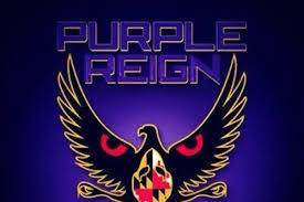 Ravens Coverage on The Purple Reign Show