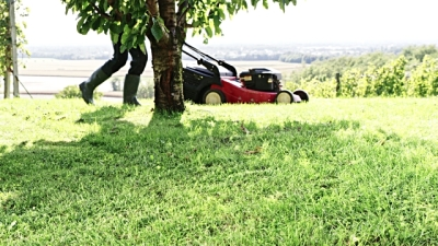 Tips That You Need to opt for When Hiring a Lawn Mowing Service Provider