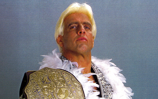 Tips to Consider When Buying the Ric Flair Merchandise