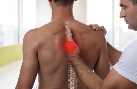 Getting Professional Chiropractic Services