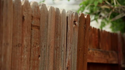The Importance of Staining Your Fence