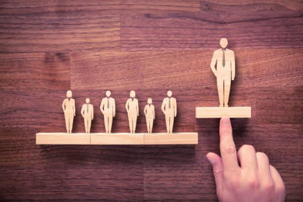 Factors to Consider When Choosing Talent Management Software