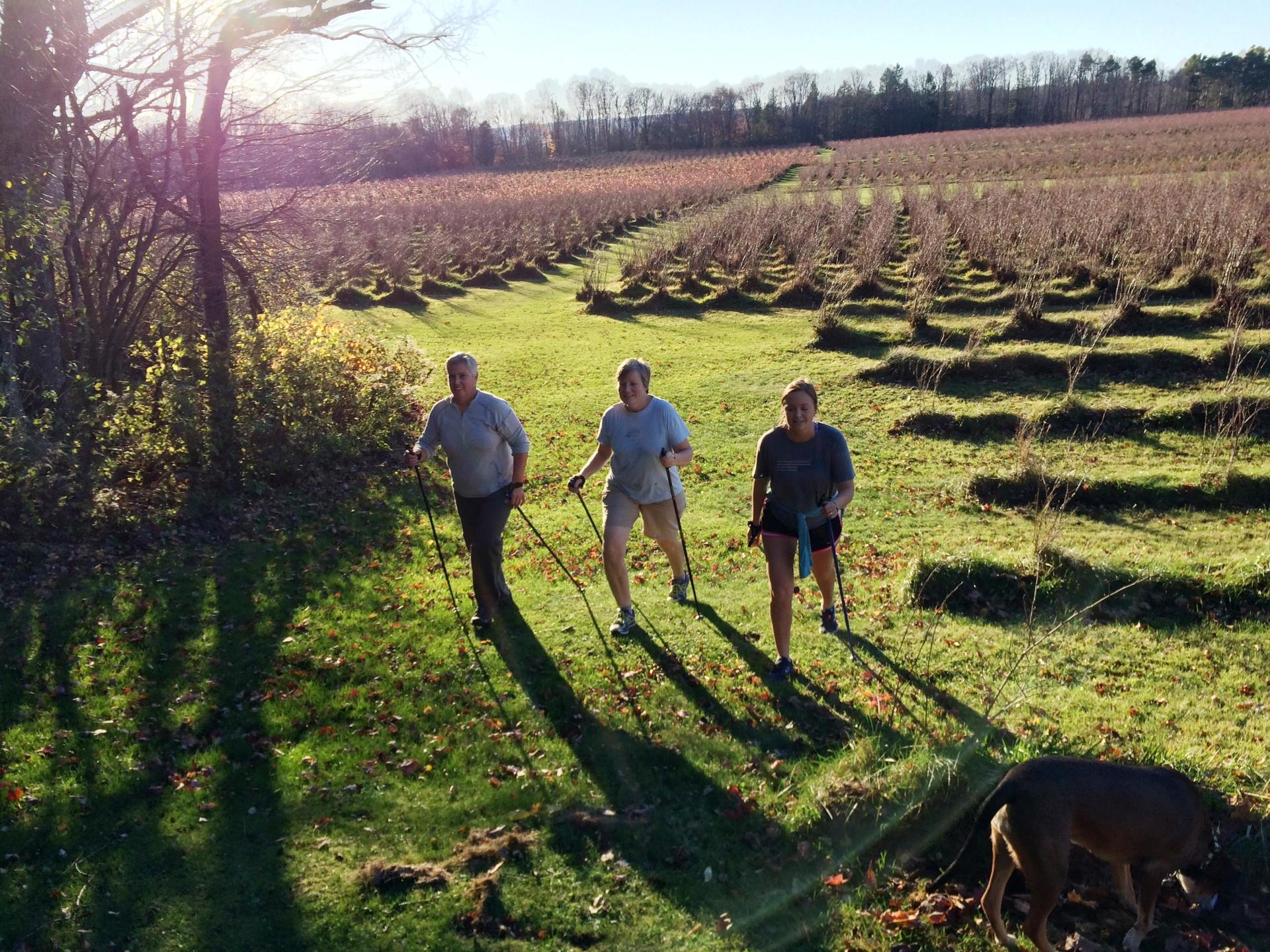 Nordic Walking at Burdick Blueberries