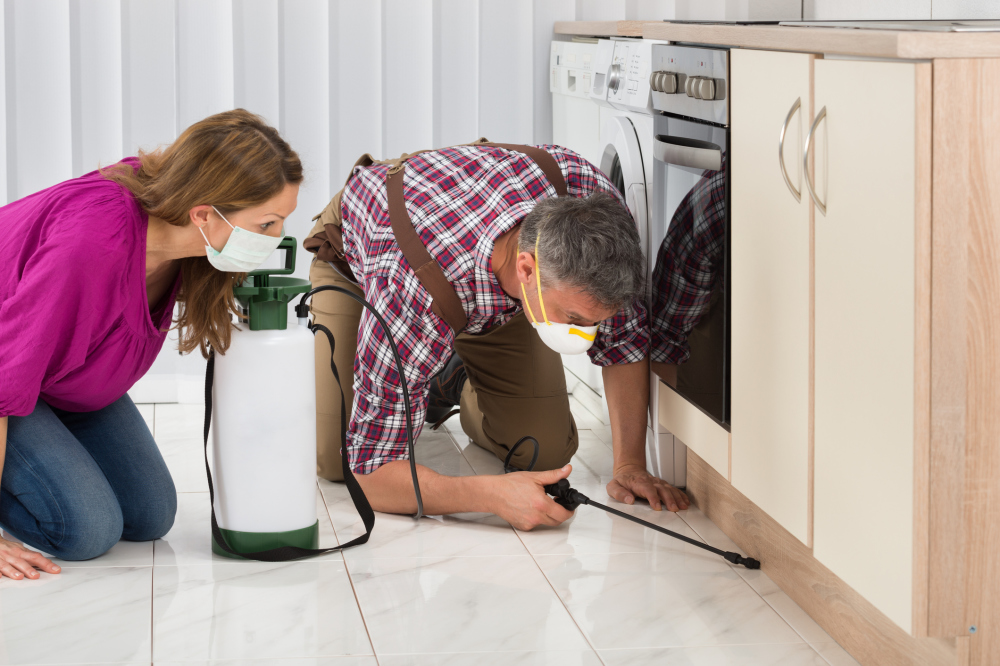 Tips on Selecting a Pest Control Company in Your Prospective Region