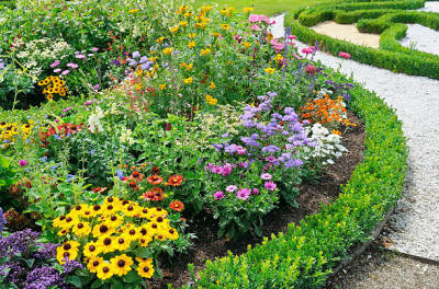 Simple Guidelines That You Must Follow As You Find the Best Landscaping Company