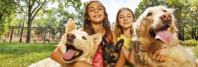 Animal Care Blog - Tips for Animal Care