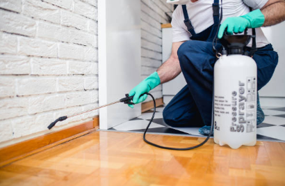 Tips to Consider When Choosing the Best Pest Management Service Provider