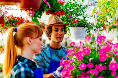 Identifying The Best Nursery And Florist