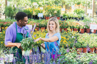 Tips for Finding Reputable Nursery and Florist Services