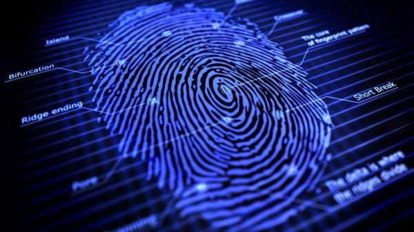 Facts to Note about Fingerprinting Services