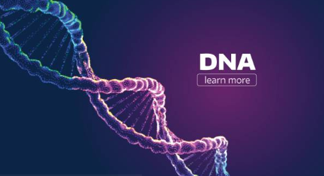 Facts To Have In Mind About DNA Extraction