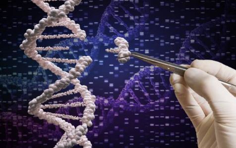 Sources of Information on Deoxyribonucleic Acid (DNA)