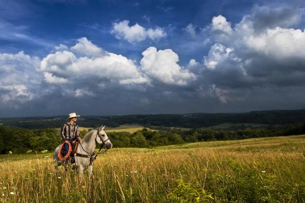 Cowboy Horse on location senior portrait
