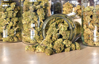 Reasons Why You Should Buy Marijuana from the Cannabis Dispensaries
