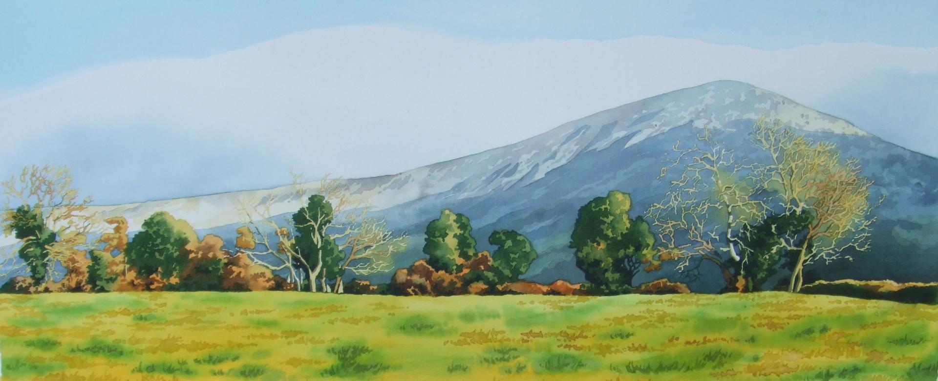 Mount Leinster in winter