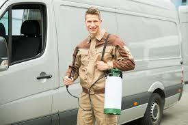 Tips to Consider When Choosing Pest Control Services