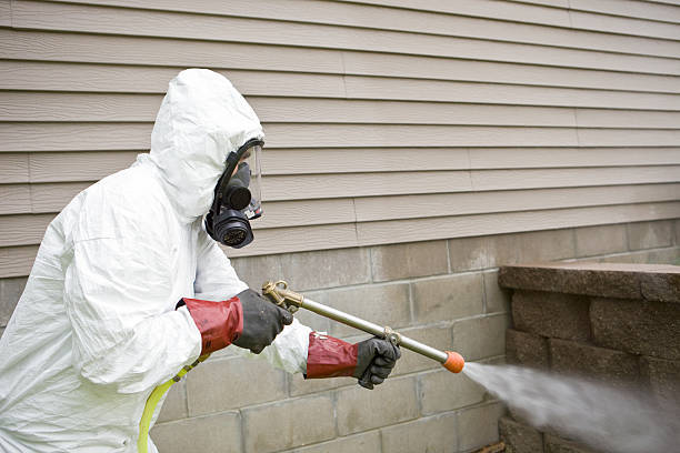 Pest Control Provider - Choosing The Best One