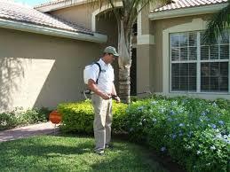 The Advantages of Hiring a Pest Control Company