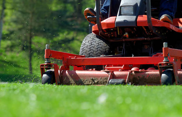 Advantages of Proper Care for your Lawns