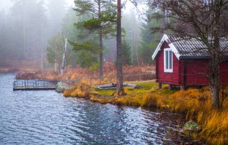 Elements to Take into Consideration When Selecting a Cabin Rental