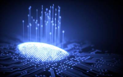 Factors to Consider Before Hiring a Fingerprinting Service Provider
