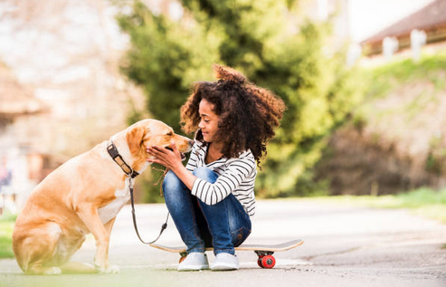 The Benefits Of Accessing Pet Booking Sites