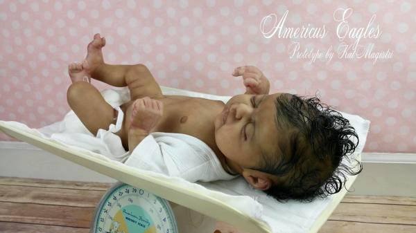 baby Americus By:L.L.E