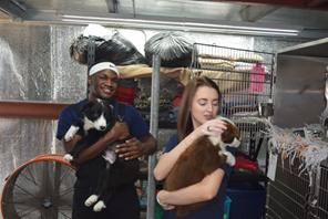 Humane Society of Southeast Texas - West Orange Team
