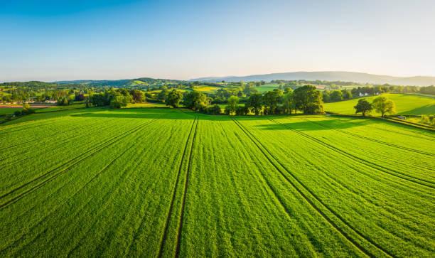 Pointers on Purchasing a Farmland