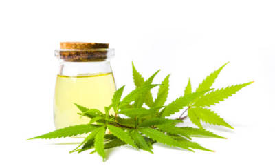 CBD Oil as a Pain Reliever