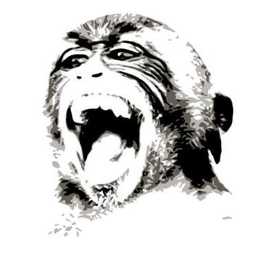 primatefit