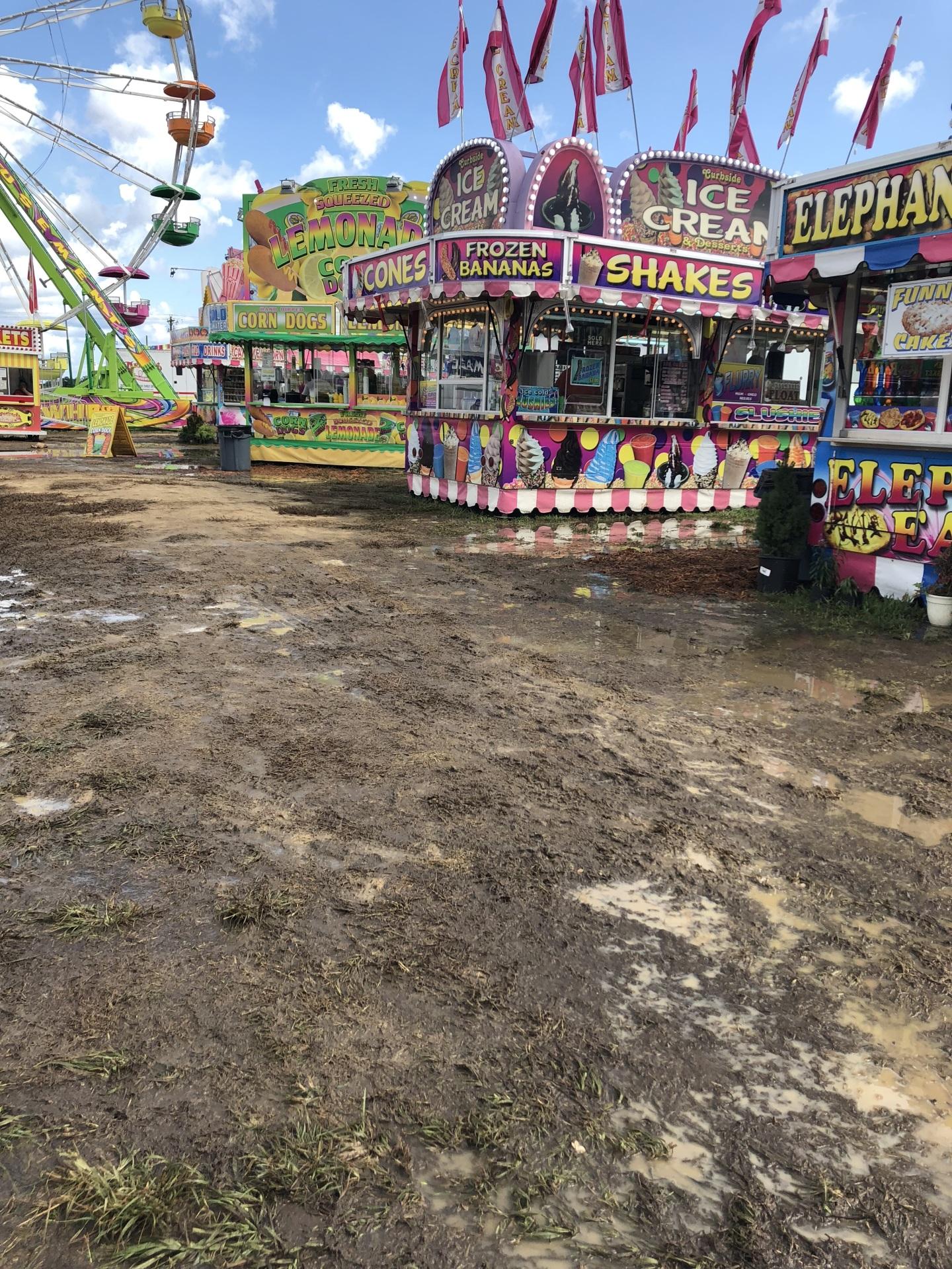 Fair-Muddy