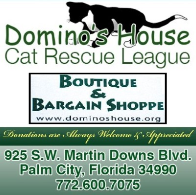 Domino's Cat Rescue League