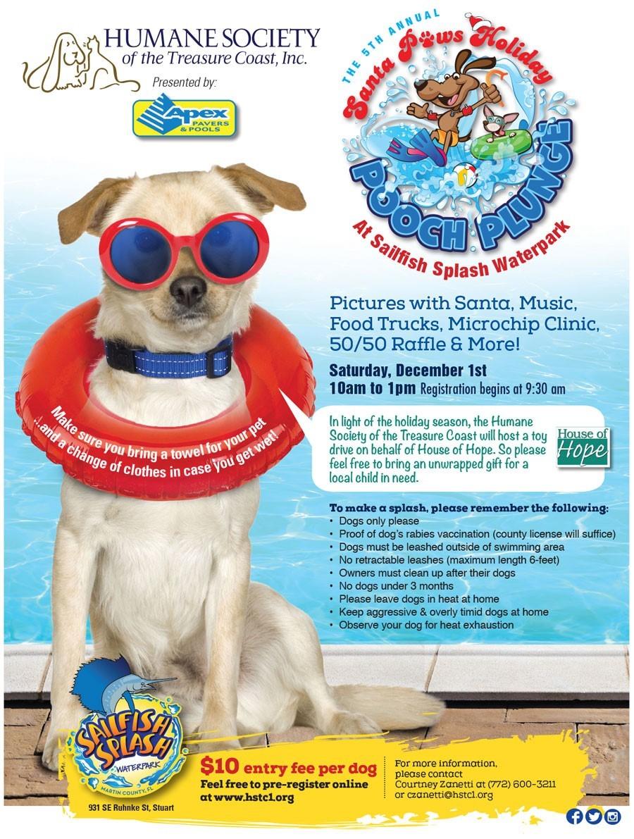 Annual Santa Paws Holiday Pooch Plunge at Sailfish Splash Waterpark
