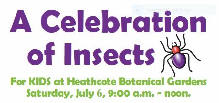 A Celebration of Insects at Heathcote Botanical Gardens