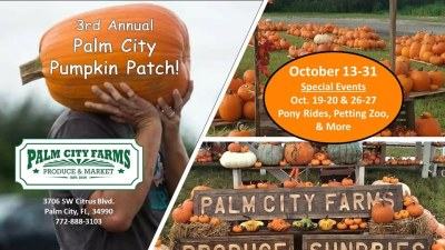 3rd Annual Palm City Pumpkin Patch at Palm City Farms Produce & Market
