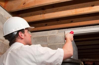 Factors That Determine Pest Control Firms' Pricing