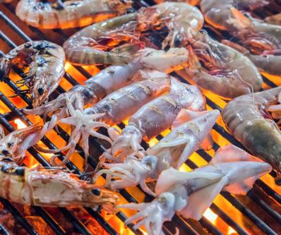 Benefits of the Gulf Shrimp