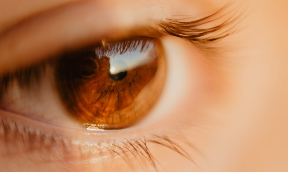 What You Should Know When Buying Contact Lenses