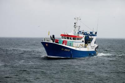 Things to Note When Purchasing a Fishing Boat