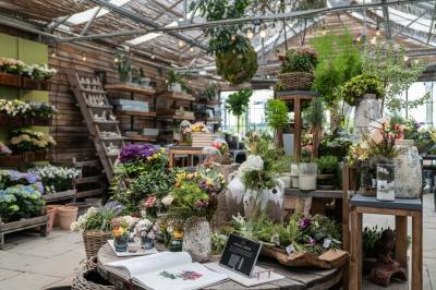 Tips to Find the Best Florist