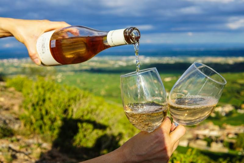 Revolutionizing Travel Experiences With Wine Tours