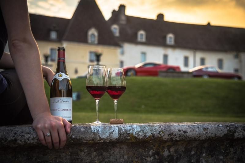 The Many Things That You Can Learn from Wine Tours