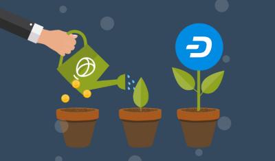 Dash führt Kryptowährungswachstum auf Uphold an