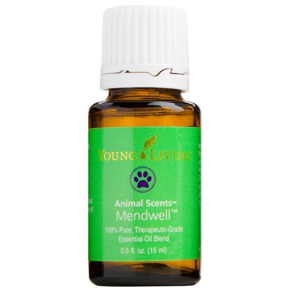 Essential Oils for Your Dogs