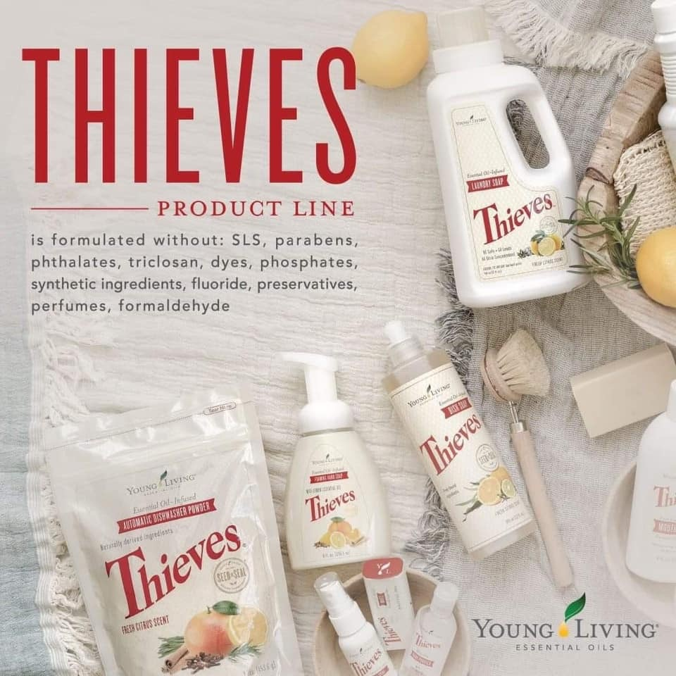 Thieves Cleaning Products