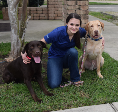 veterinary assistant with her two labradors