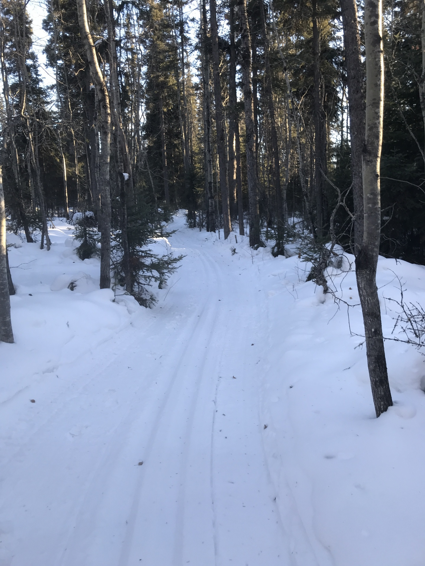 Ski & Hiking Trails