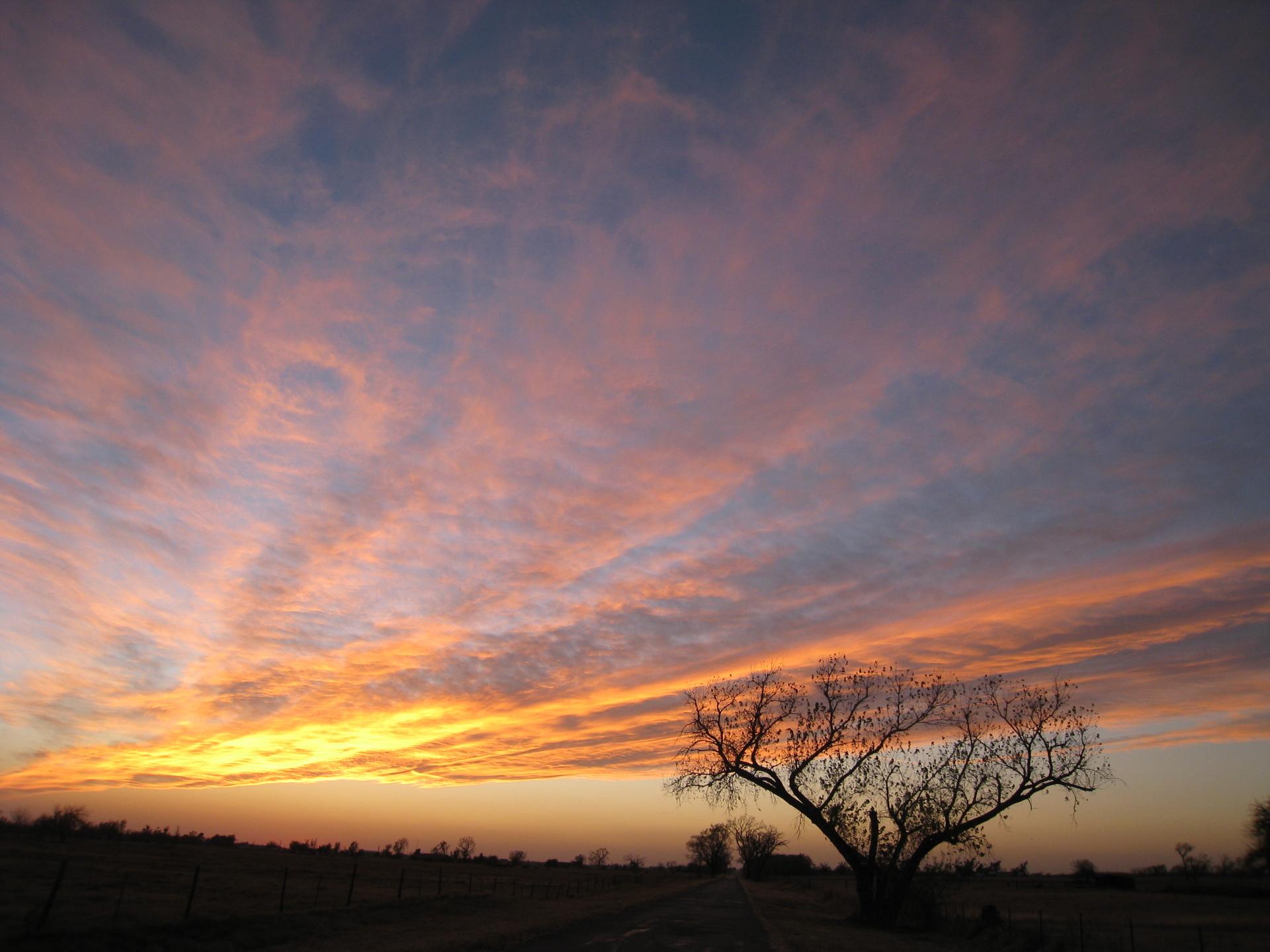 Oklahoma--November 2010